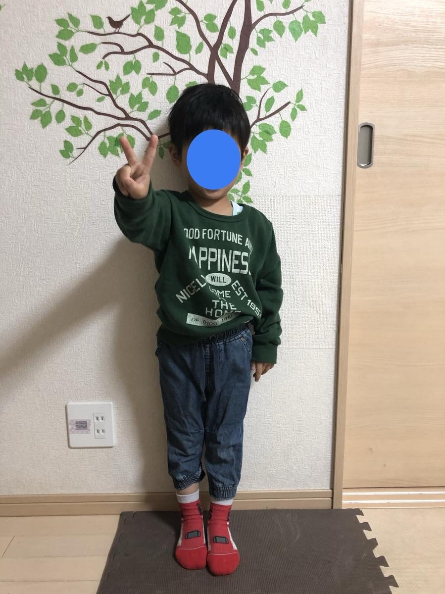 f:id:ishijiro2:20190425071736j:plain