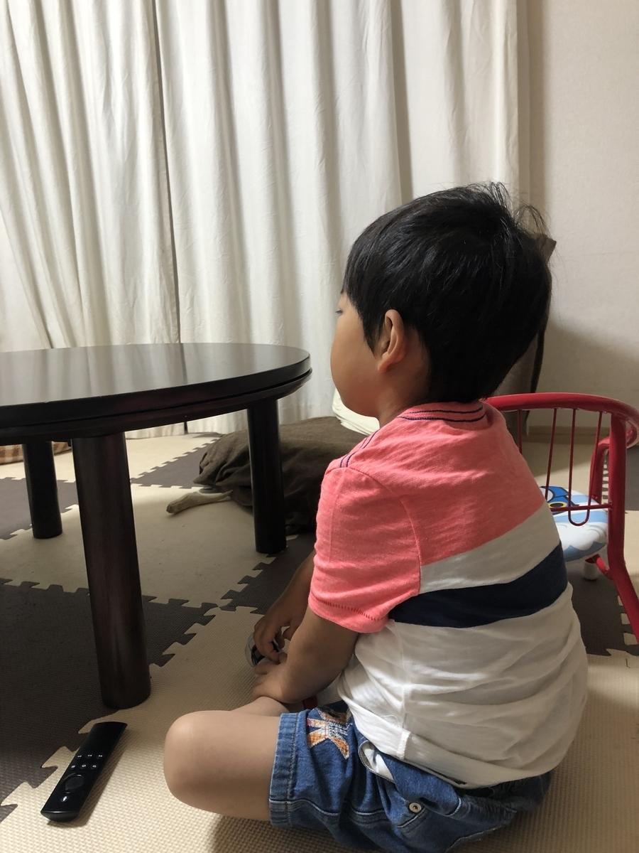 f:id:ishijiro2:20190620071221j:plain