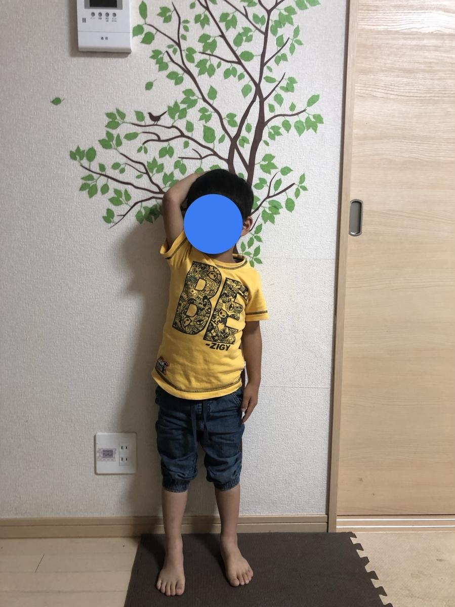 f:id:ishijiro2:20190621071539j:plain