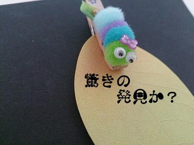 f:id:ishikara:20180418230436j:image