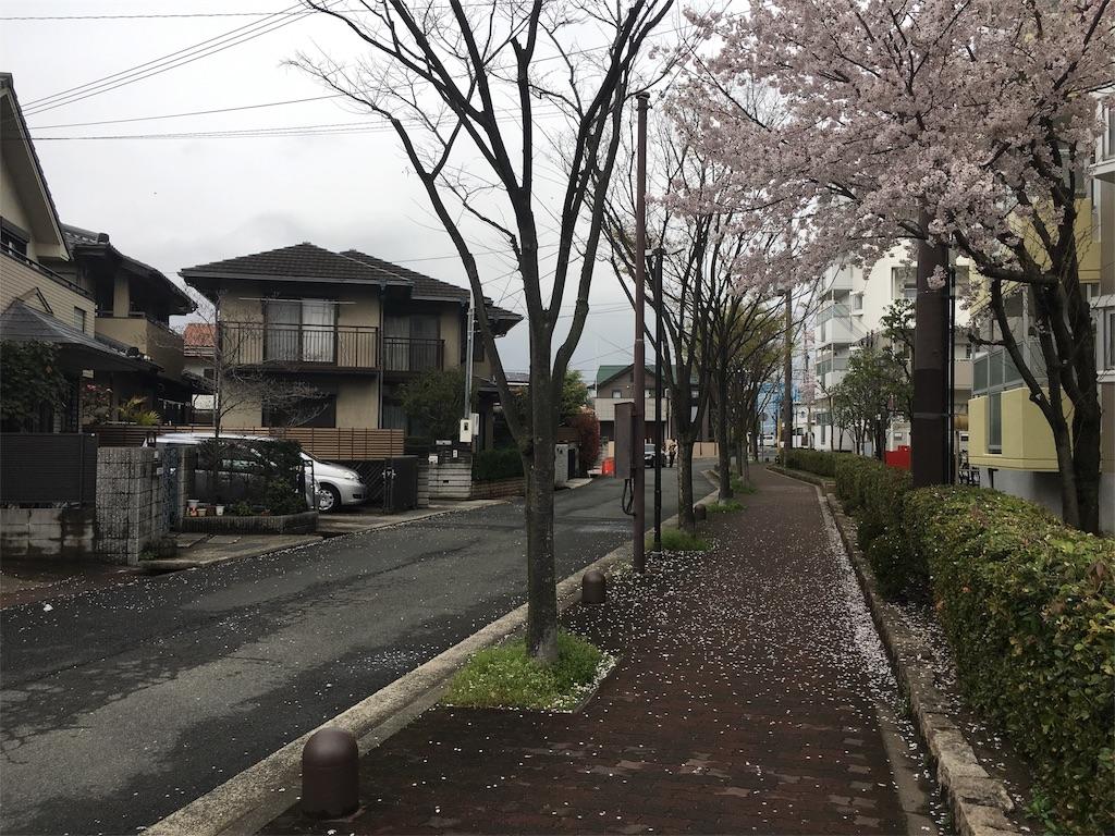 f:id:ishikawa-ao:20170408232139j:image