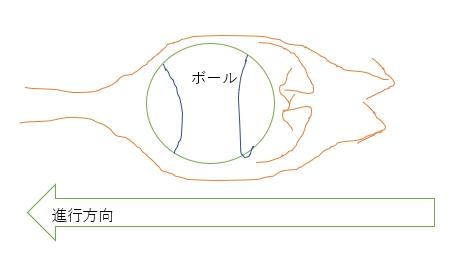 f:id:ishiyan_kin:20191204074917j:plain