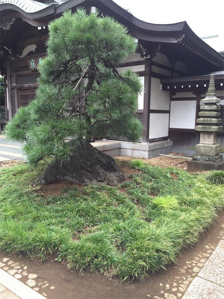 f:id:ishiyoshi1444:20160913232518j:image