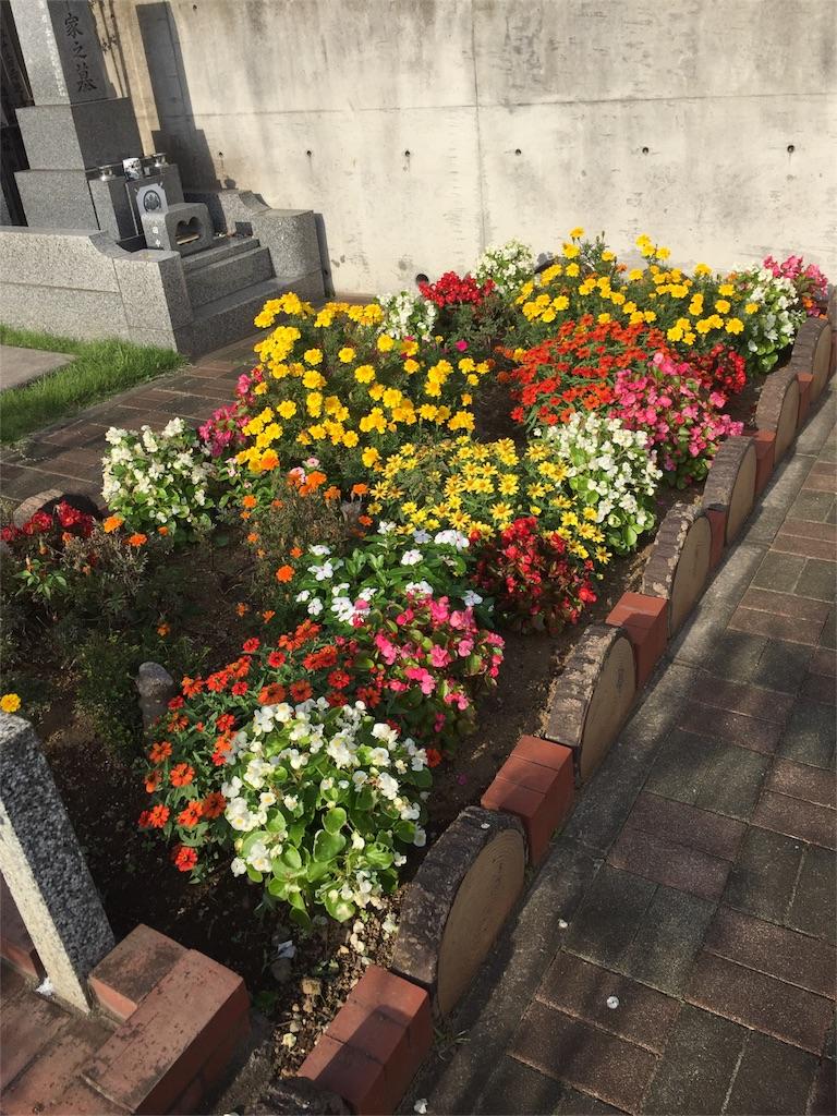 f:id:ishiyoshi1444:20161024132927j:image