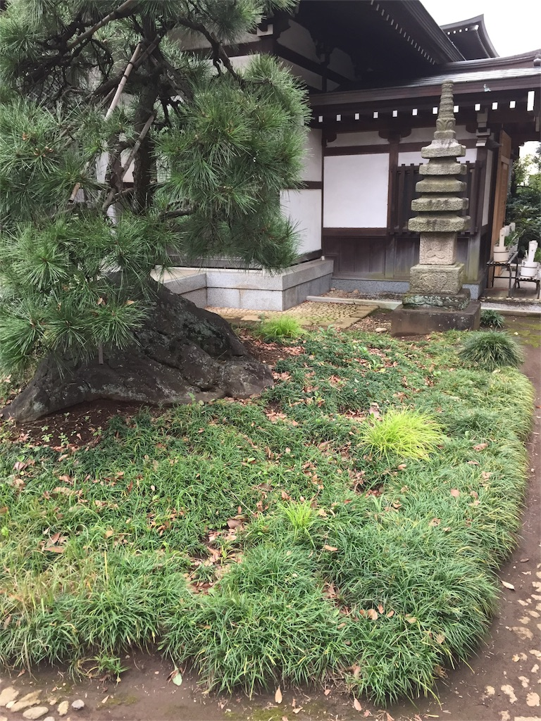 f:id:ishiyoshi1444:20161103010209j:image