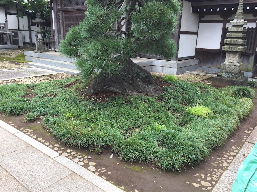 f:id:ishiyoshi1444:20161103010309j:image