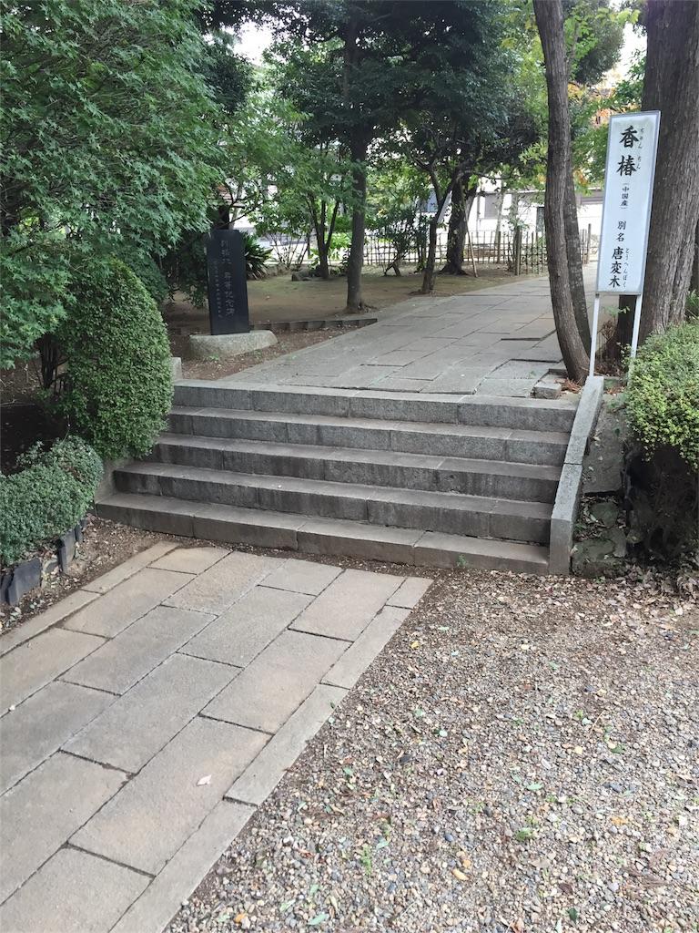 f:id:ishiyoshi1444:20161111153356j:image