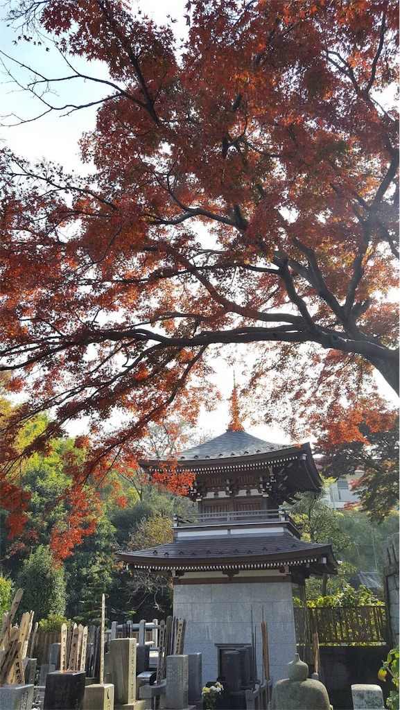 f:id:ishiyoshi1444:20161121000512j:image