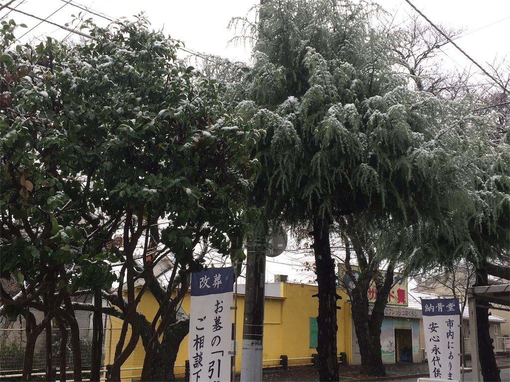 f:id:ishiyoshi1444:20161124134331j:image