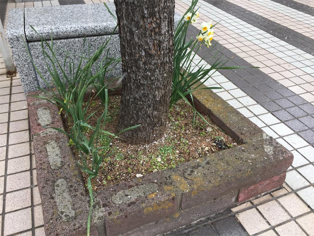 f:id:ishiyoshi1444:20170114153534j:image