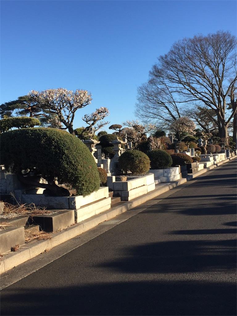 f:id:ishiyoshi1444:20170212215724j:image