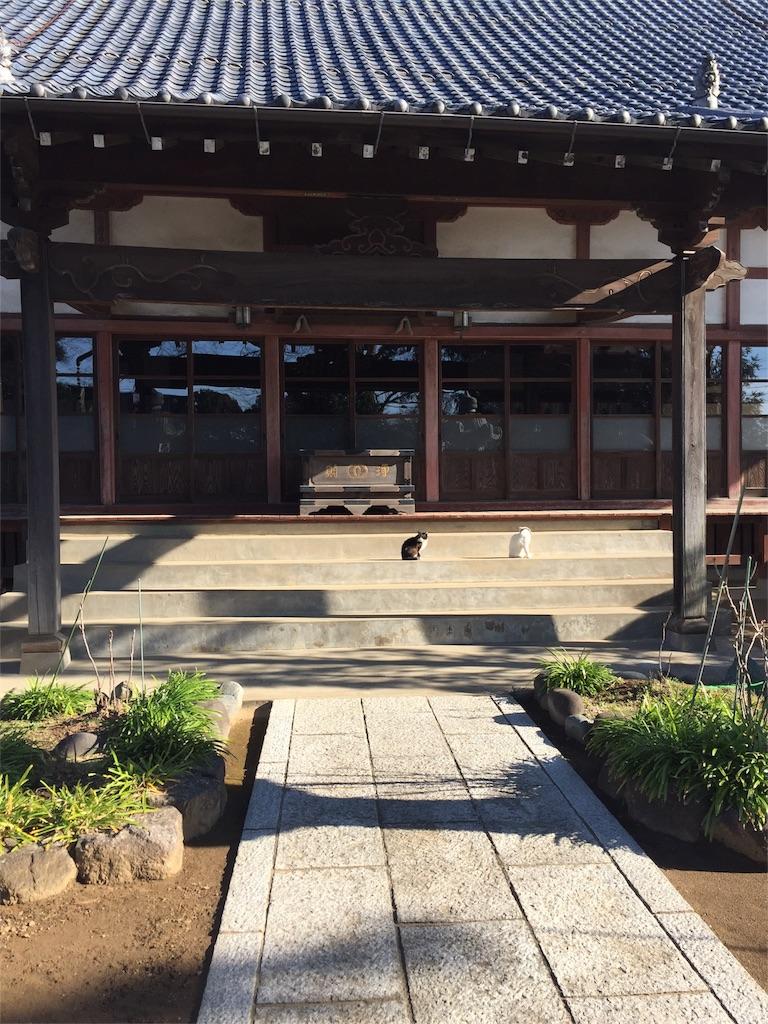 f:id:ishiyoshi1444:20170318015031j:image