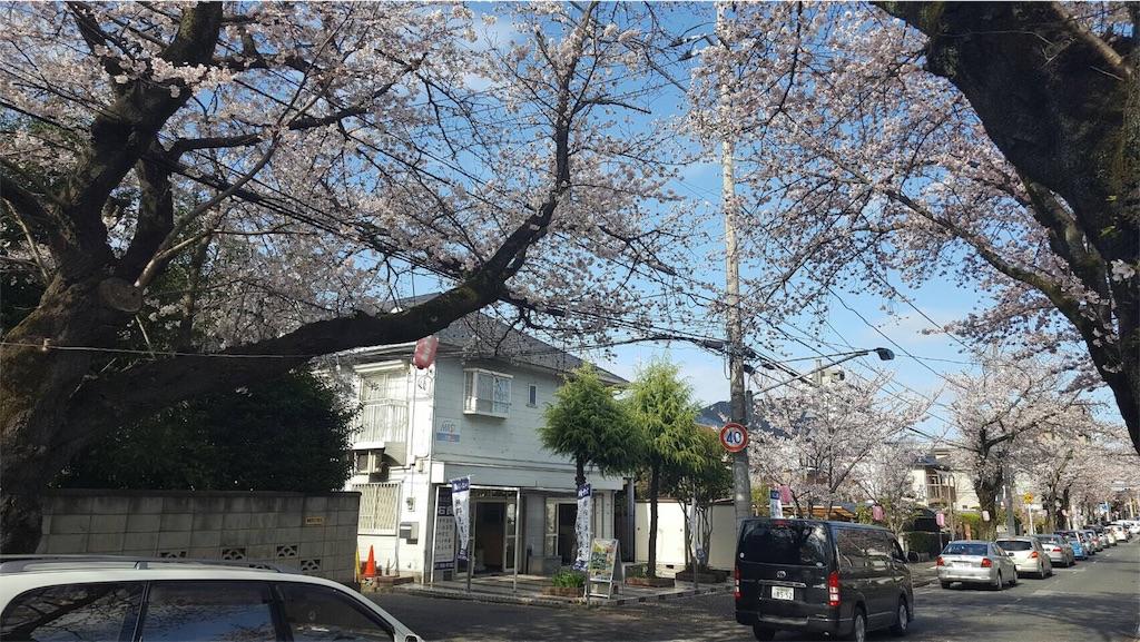 f:id:ishiyoshi1444:20170408174022j:image