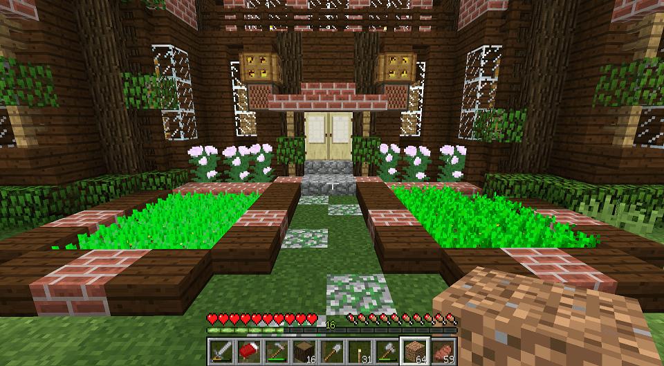 玄関前にジャガイモと人参の畑