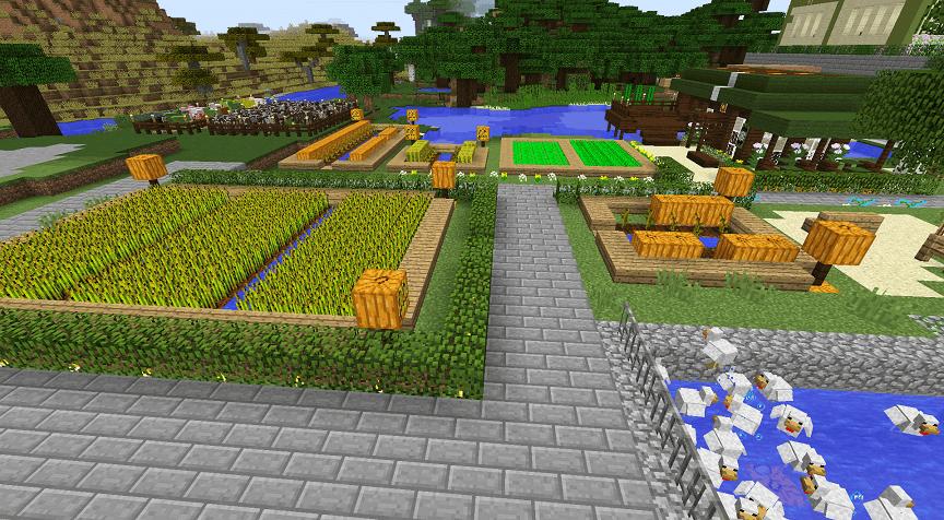 かぼちゃや小麦などの畑