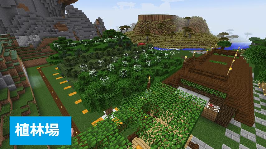上から見た植林上と木こり小屋