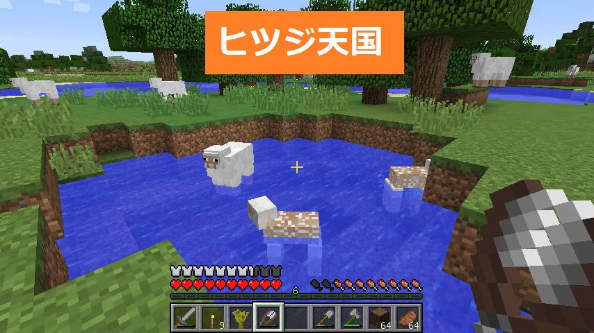 池やその周りにいるヒツジたち