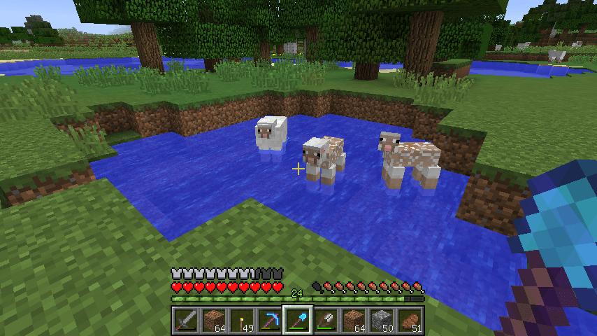 ヒツジさんが集まる池
