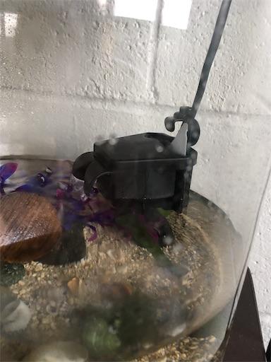 f:id:islandfish:20191015073030j:image
