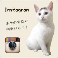 banner_200x200-instagram.jpg