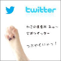 banner_200x200-twitter.jpg