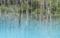 美瑛の青い沼