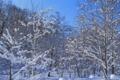 春近い積雪