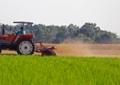 牧草の収穫2
