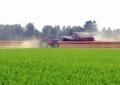 牧草の収穫1