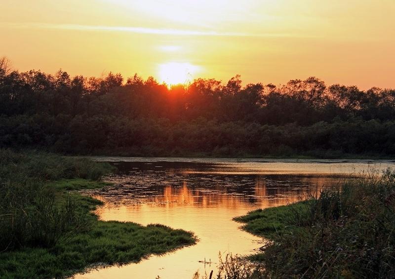 泥炭地の夕陽