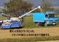 農作業10