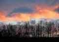 秋の夕焼け