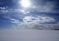 北海道冬風景14