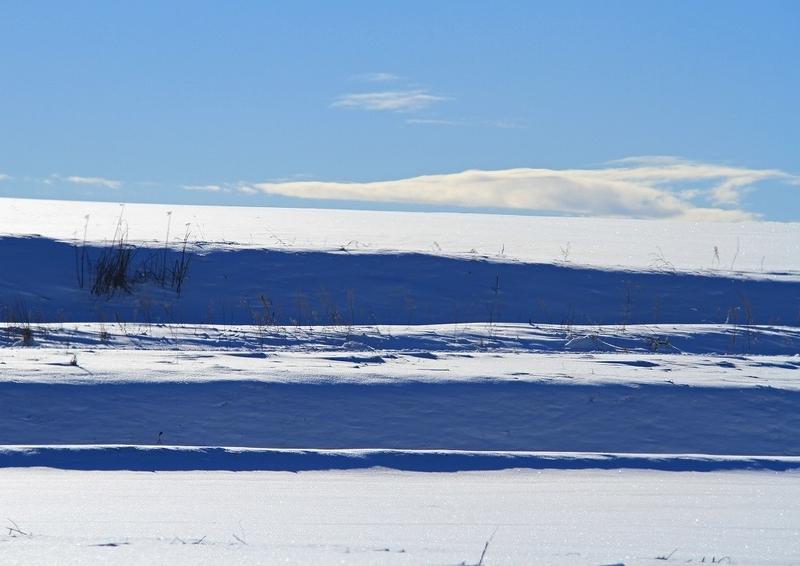 北海道冬風景12