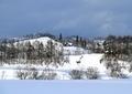 北海道冬風景9