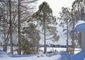北海道冬風景3
