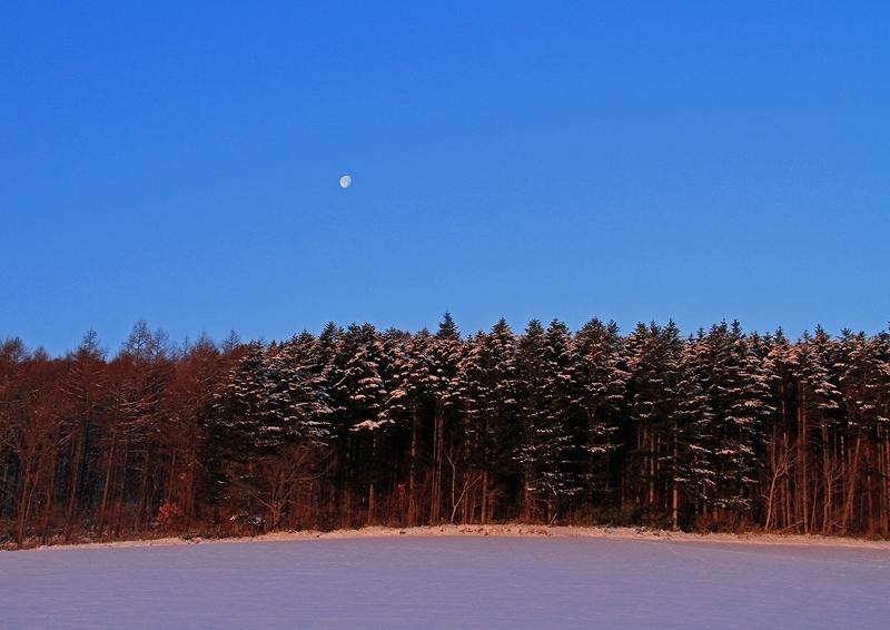 12月の風景5