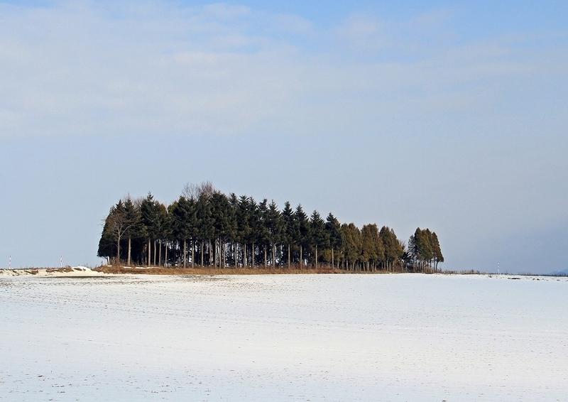 12月の風景2
