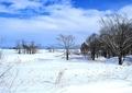 2月の風景5