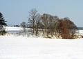2月の風景3