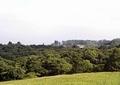 農村風景山1