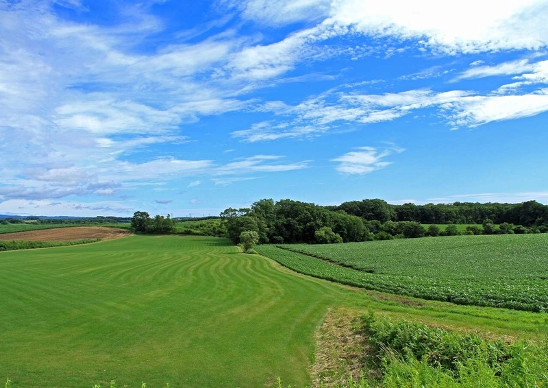 農村風景2