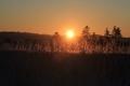 冬の風景 朝日6