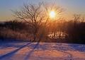 冬の風景 朝日4