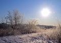 冬の風景 朝日2