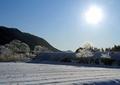 冬の風景 朝日1