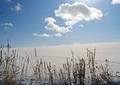 冬の風景28