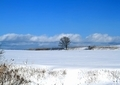 冬の風景23