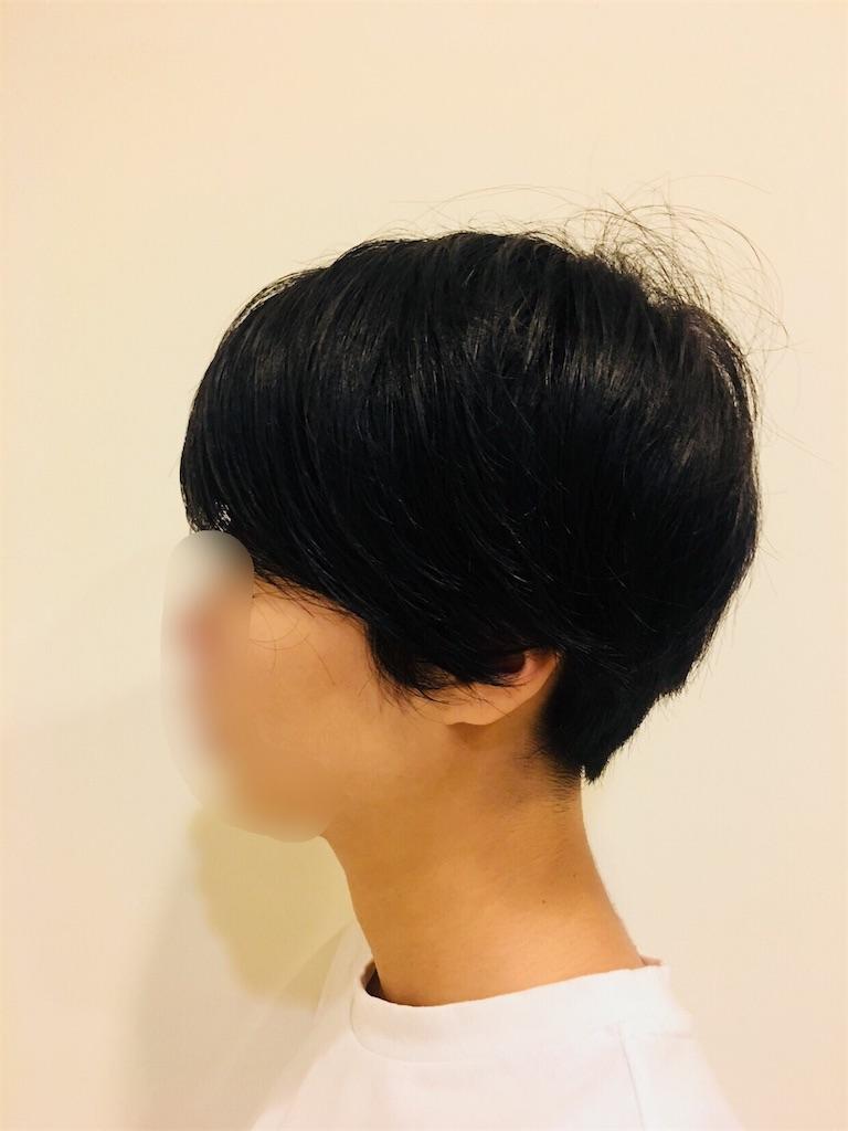 f:id:isoyama0103:20171106155343j:image