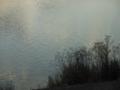 夕闇迫る川面